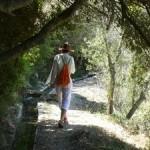Joyfull Yoga Walk